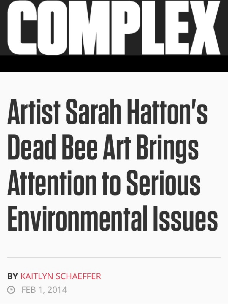 """2014/02/01 """"Artist Sarah Hatton's Dead Bee Art Brings Attention to Serious Environmental Issues""""."""