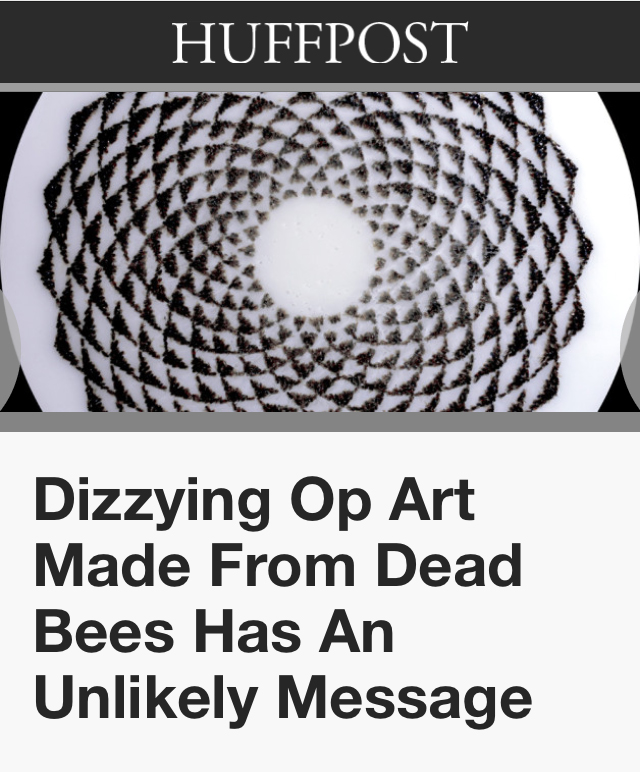 """14/01/24 """"Dizzying Op Art Made From Dead Bees Has An Unlikely Message"""" Priscilla Frank. Huffington"""